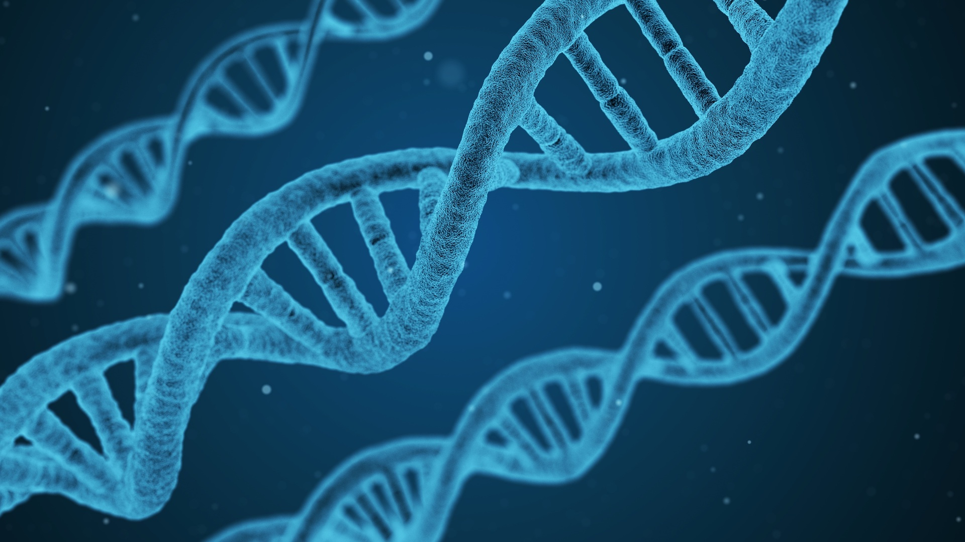 Digital avatars, simulations and genetic material