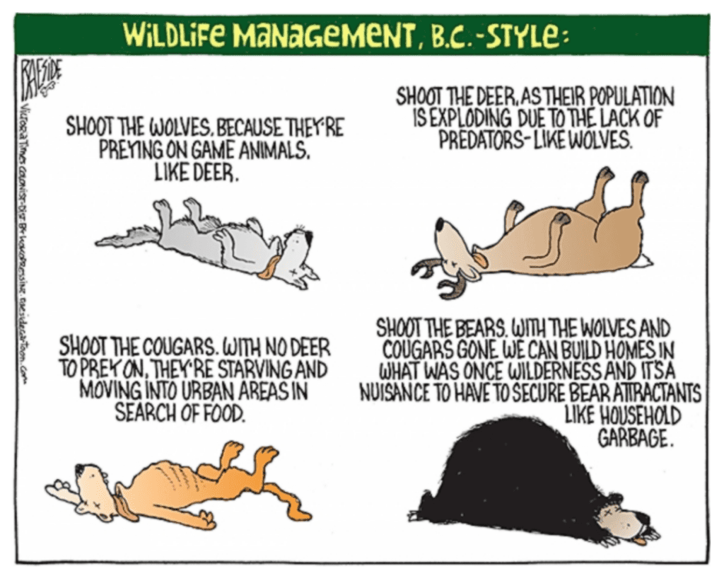 Wildlife Management: B.C. Style