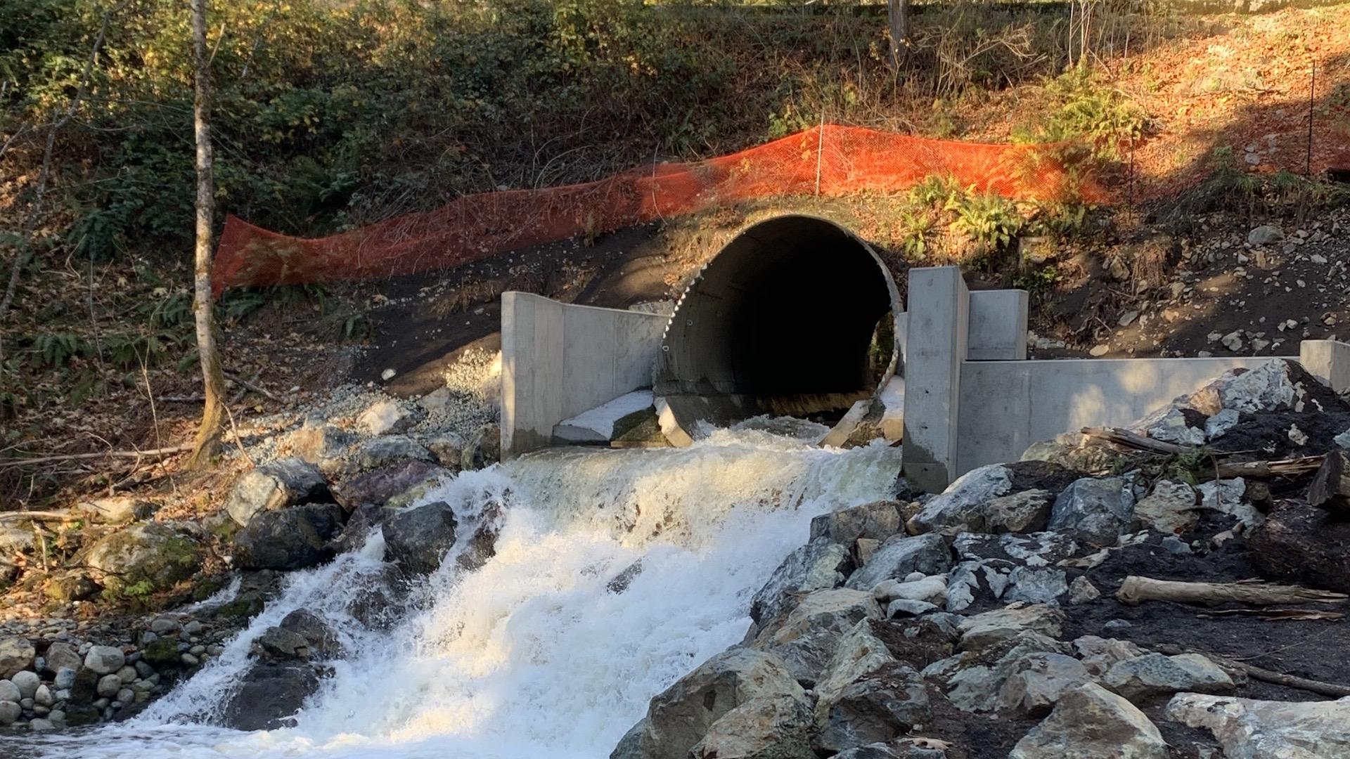 Millstream Fishway restoring critical salmon habitat