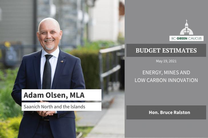 Budget Estimates 2021: Energy, Mines, Low Carbon Innovation